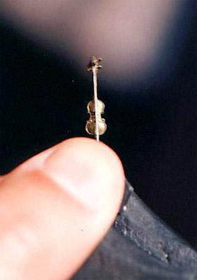 Миниатюрная скрипка, на которой играл сам Газарян.