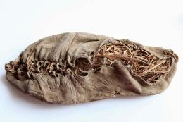 Кожаная обувь – 5500 лет