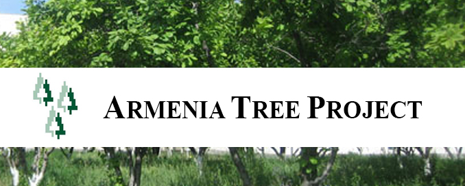 Armenia Tree Project
