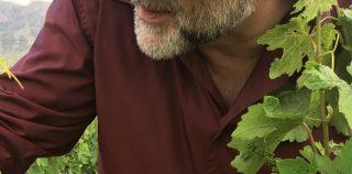 Оваким Сагателян: «Вино – это продукт жизнедеятельности человека»